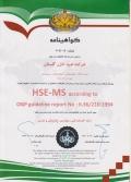 استاندارد HSE - MS